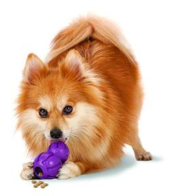 Busy Buddy Barnacle Dog Toy - Extra Small