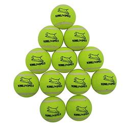 EXPAWLORER Dog Squeaky Tennis Balls for Dogs Set of 12 for P
