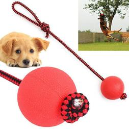 Indestructible Dog Ball on a Rope for Pet Puppy Toys Tug Bal
