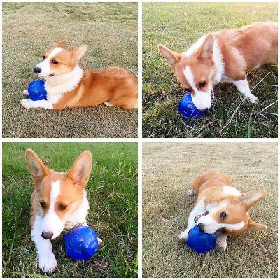 2pcs Puppy Tough Treat Chew Squeaky Ball Toy