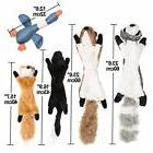 5 Pack Plush Animal Dog Toy Set Squirrel Squeaky Unstuffed C