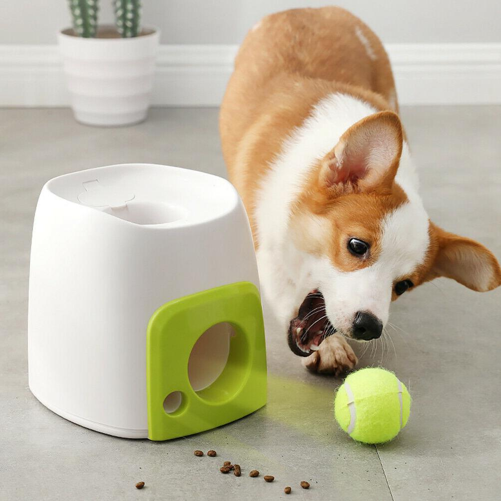 Best Automatic Pet Dog Launcher Tennis Ball Toy Interact Fet