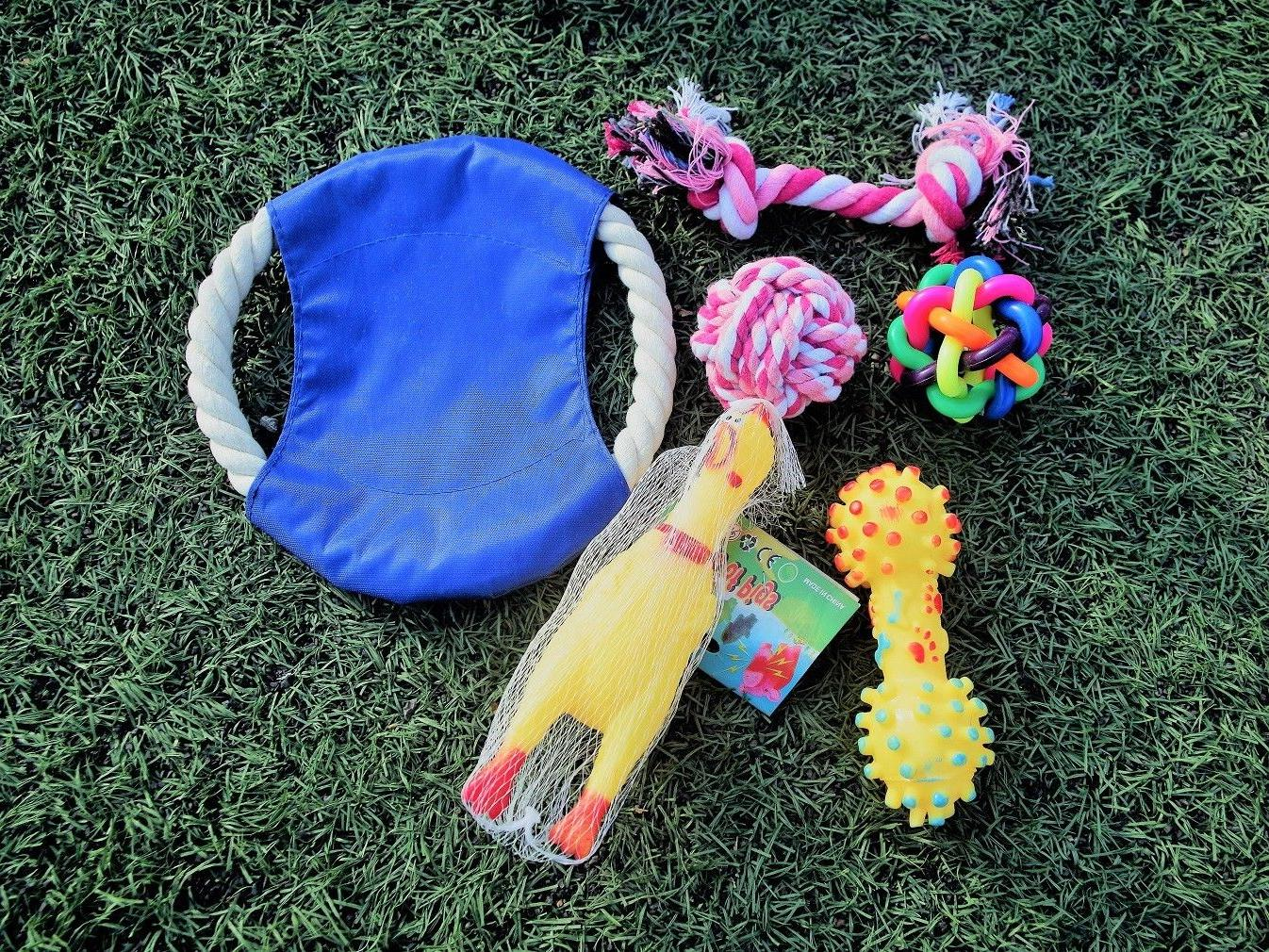 Chew and Dog Toys for Puppy Doggie and Small Medium 6