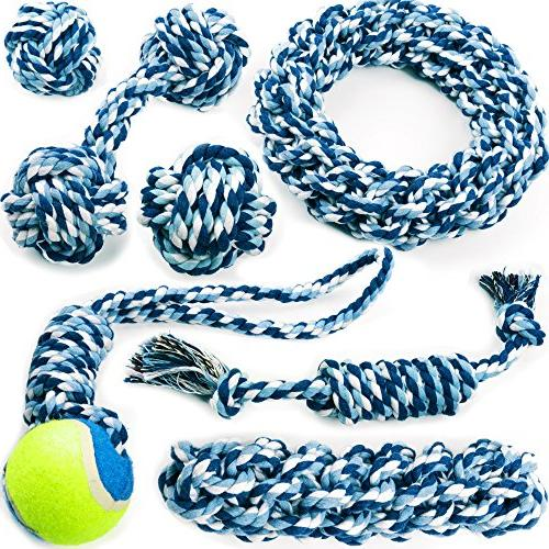 chewers play dog rope toy