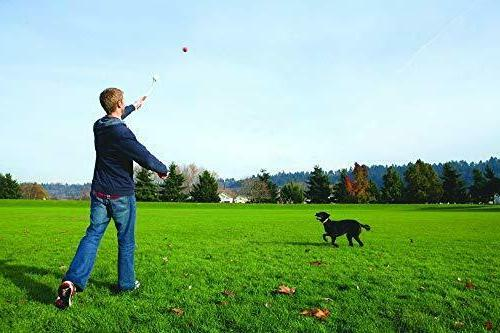 CHUCKIT! LAUNCHER 26-inch Fetch Toy