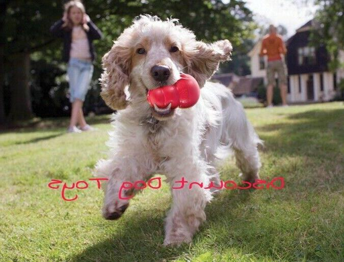 KONG Red Dog Toy and Fast Shipping