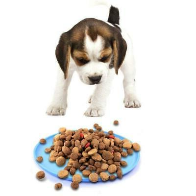 Pet Training Puppy Disc New
