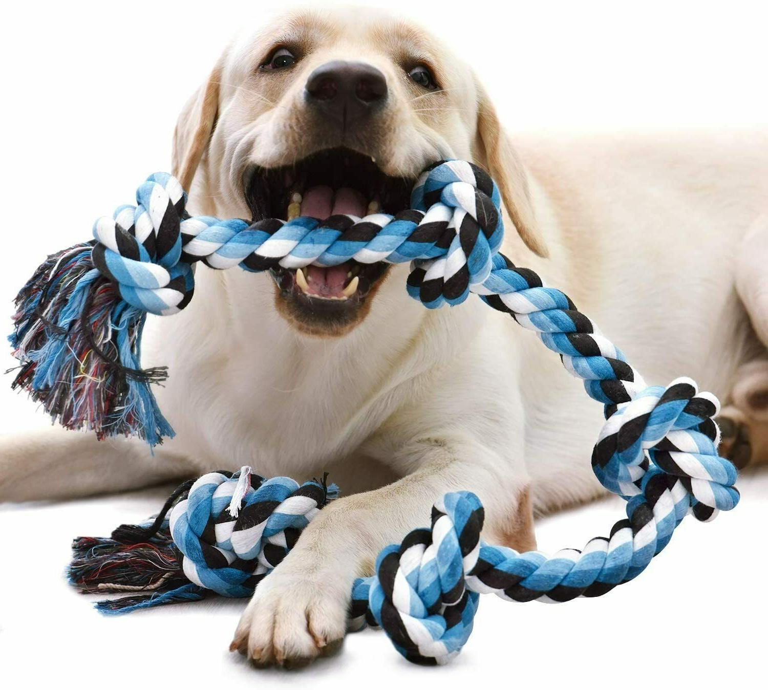dog rope toy for aggressive chewers medium