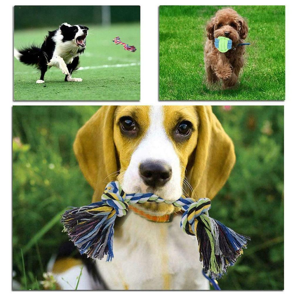 Dog Toys Aggressive Puppy Chew Teething Pack