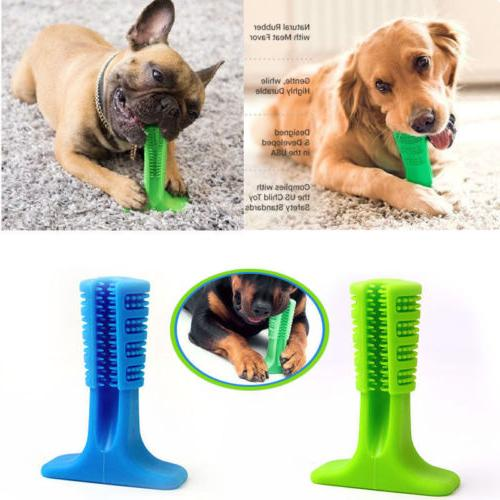 dog toothbrush brushing stick teeth cleaning chew