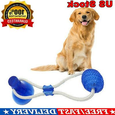 dog toy floor suction cup with ball