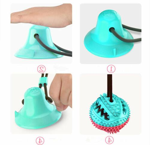 New Pet Floor Suction Cup Puppy Teeth Chewing