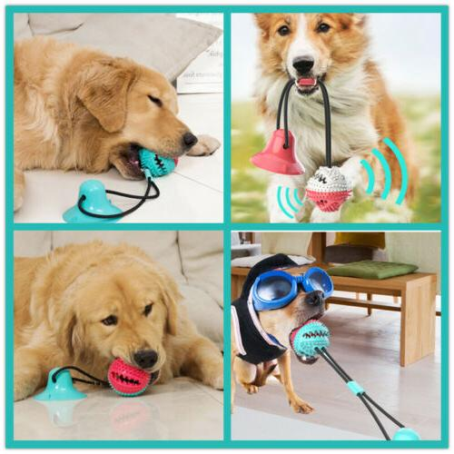 New Suction Ball Toy Puppy Chewing