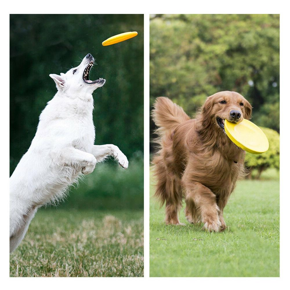 Dog Durable Frisbee LARGE Chew Fetch Toys