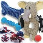 dog toys pack squeaky plush rope ball