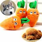 lovely puppy pet carrot chicken leg plush