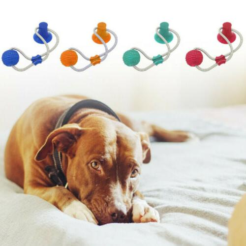 Multifunction Toy Dog/Cat Funny Playing Ball