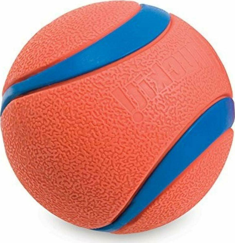 New 2-Pack Dog Ball and Floats Bright Orange Medium