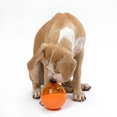 Our IQ Treat Ball Dispensing Dog Toy