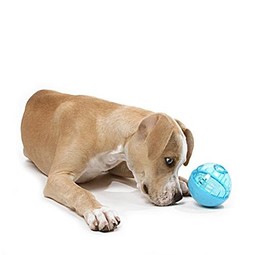 Our Ball Dog Toy