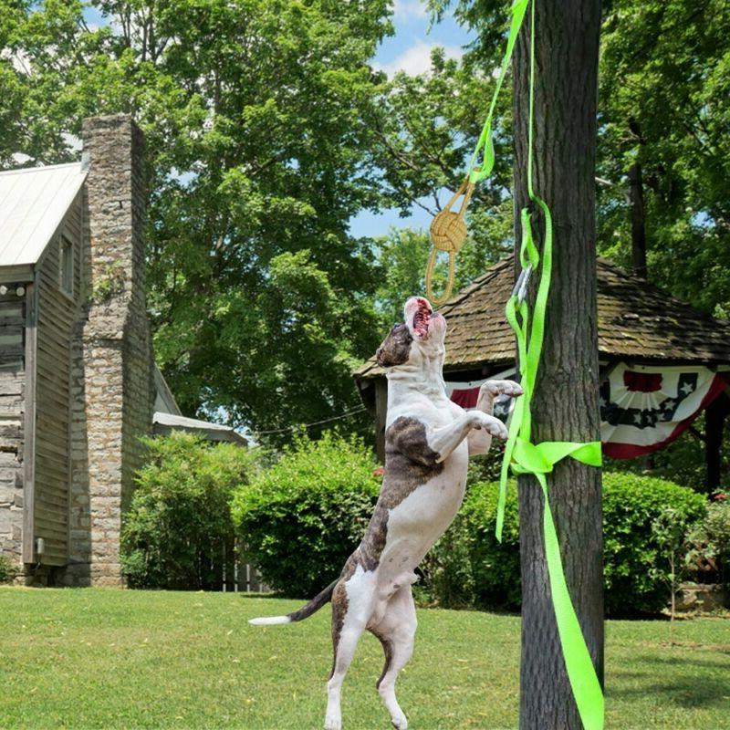 Tether Tug Outdoor Dog Interactive Toy Tugging Pull Exercise