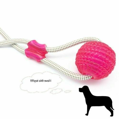 Cup Ball Puppy Teeth Toy New