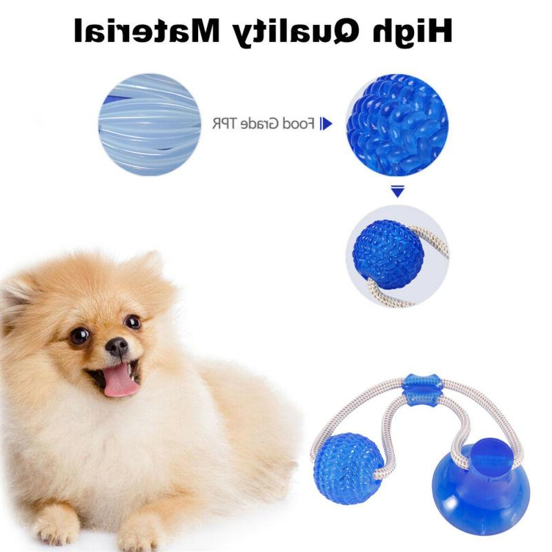 Pet Dog Floor Cup Ball Toy Cat Cleaning Playing