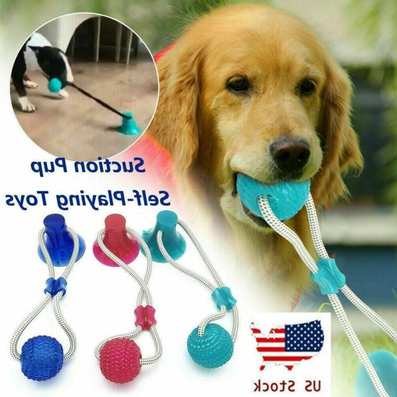 pet dog floor suction cup ball toy