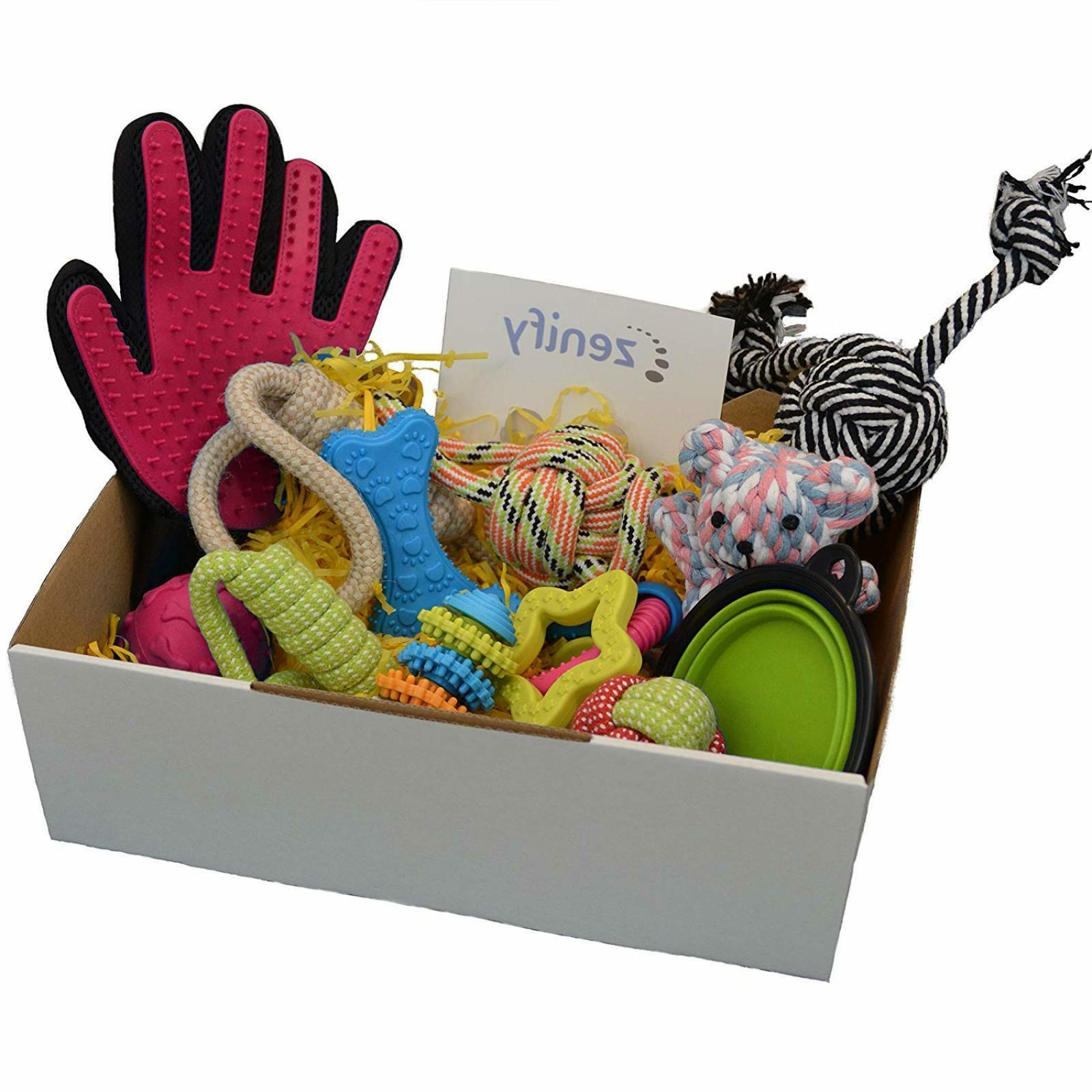 Zenify Puppy Toys Gift Box for New Dog Owners -12 Gifts |Fre