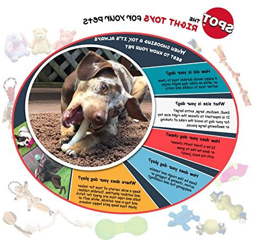 Ethical Pets Dura Treat Ball Dog