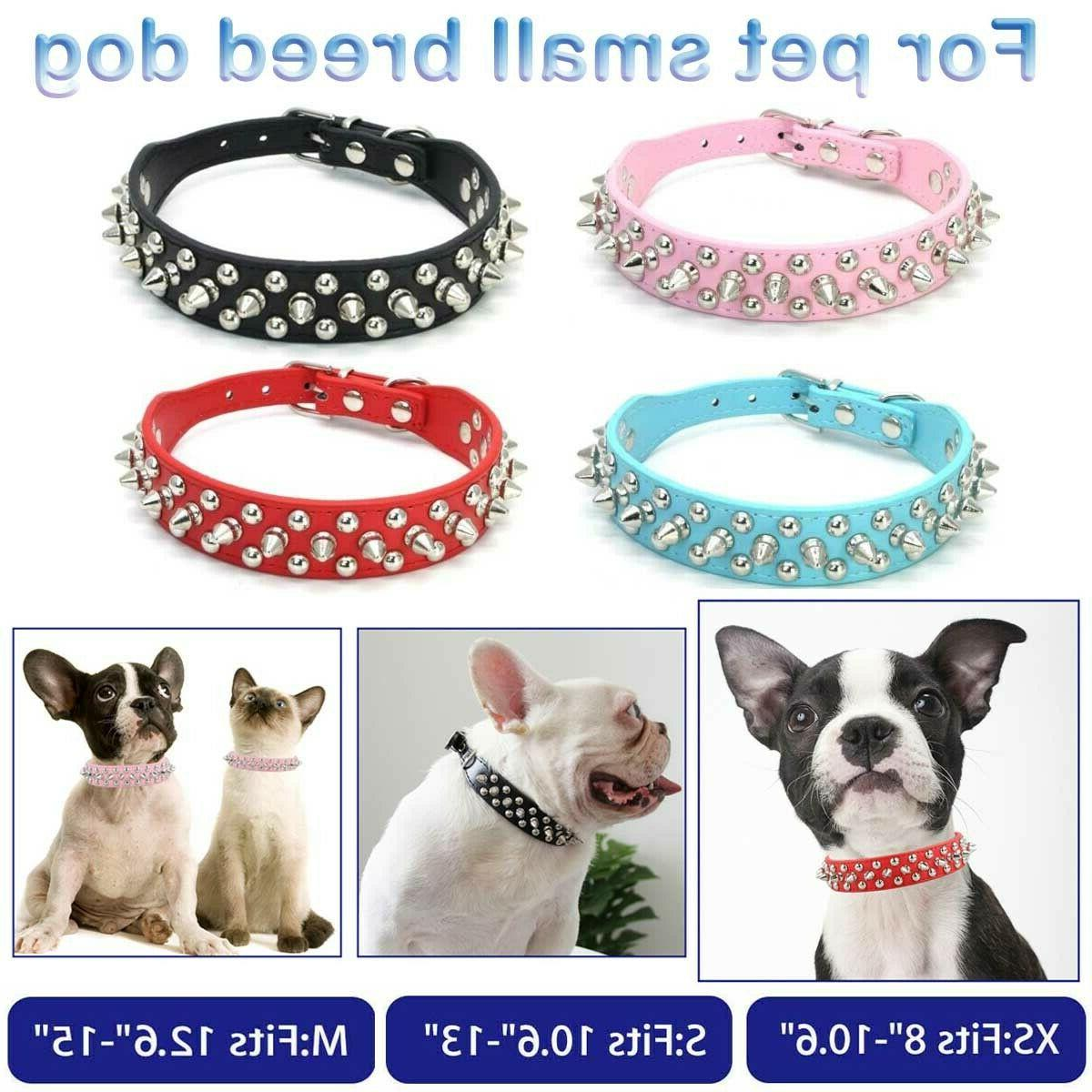 small dog spiked studded rivets dog pet