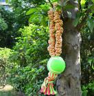STP-US Pet Toys Durable Bungee Rope Tug with Tennis Ball for