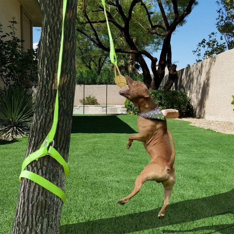 Outdoor Hanging Bungee Rope Tug Of War Interactive Dog Toy F