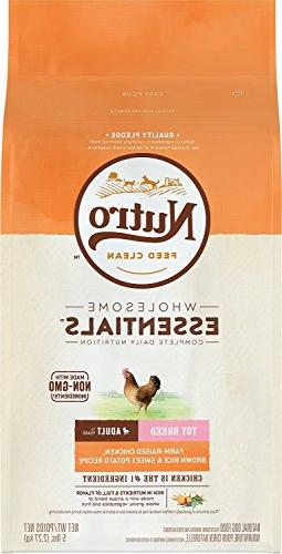 toy dog chicken rice oatmeal