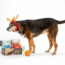 BarkBox Supersized 90s Throwback Electronic Dog Toy Bundle;